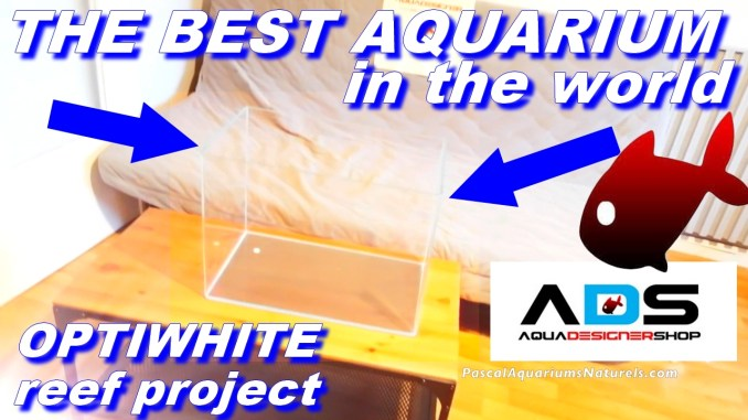 optiwhite aquarium recifal