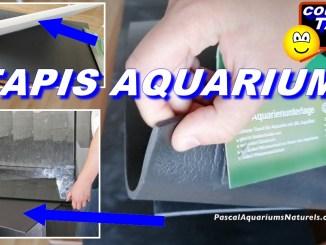 tapis aquarium