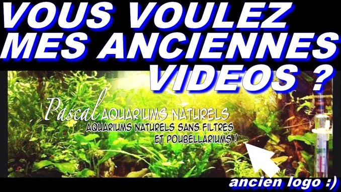 ancienne vidéos pascal aquariums naturels