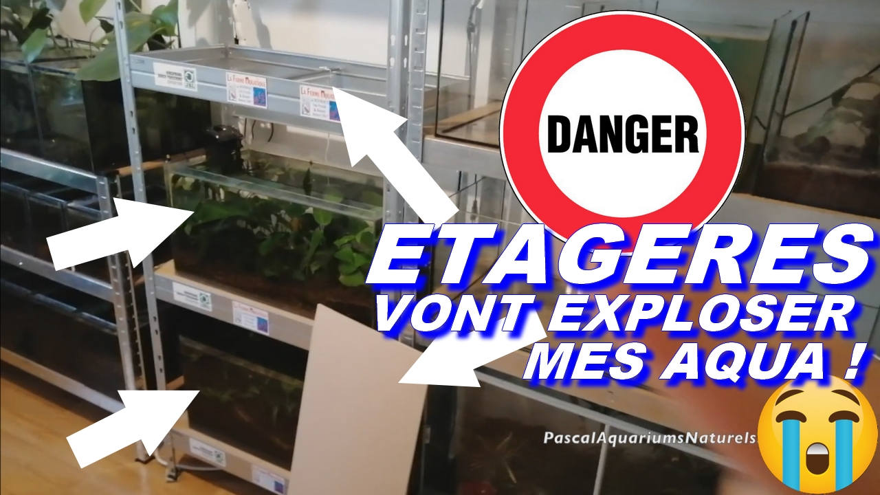 etagere castorama danger