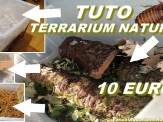 terrarium naturel (bio actif) à 10 euros