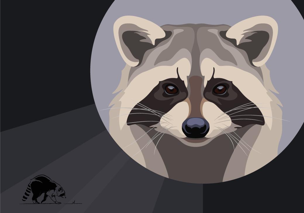 vector illustration graphic of wild animals