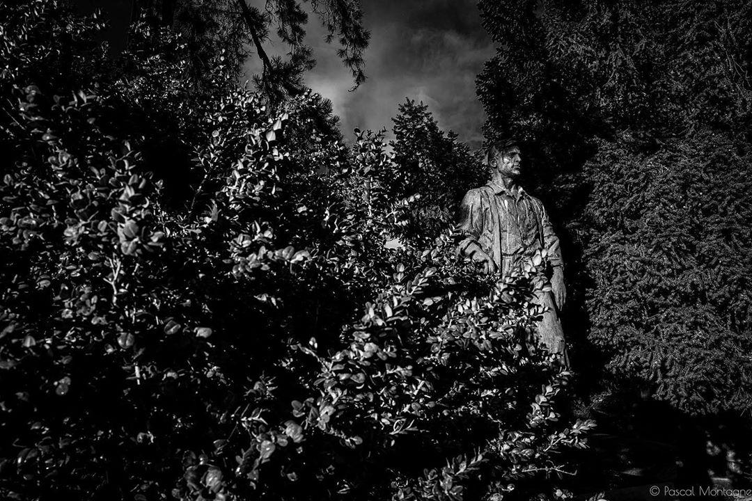 Père Lachaise cemetery statue  #perelachaise #perelachaisecemetery #cemeteries #cemeteries #statue #nature #trees #leaf #foliage #sky #shadow #blackandwhite #blackandwhitephotography #bnw #bnwphotography #leica #leicaq #instalike #instagood