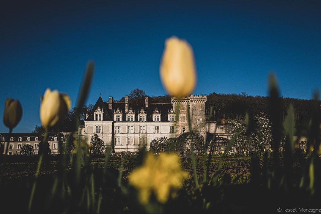 Confinement – day 20 – Sunset on Villandry Castle – #confinement #confinamento #tourism #french #france #frenchcastle #castle #flower #sky #sunset #tourism @chateauvillandry