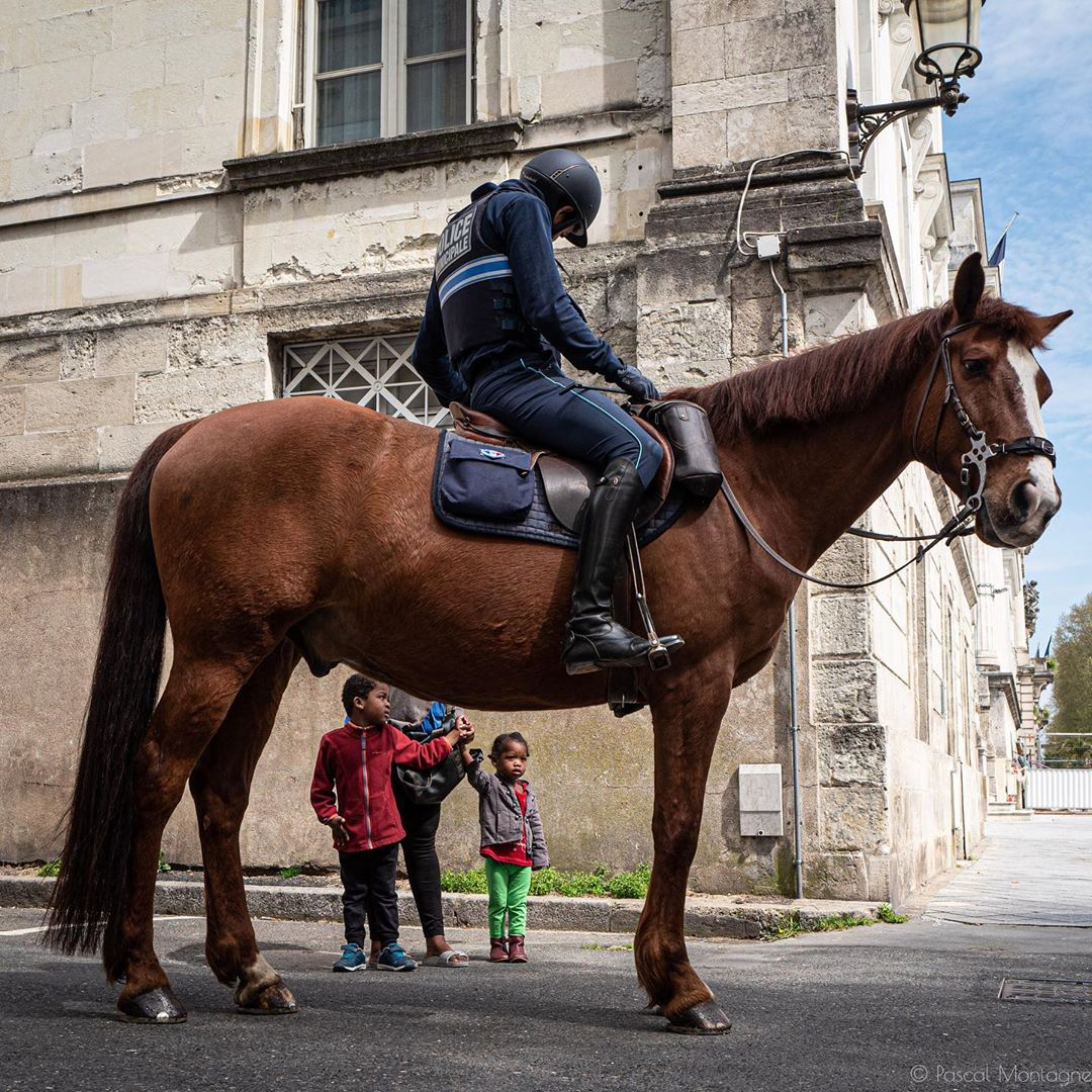 Confinement – day 23 – horse police confinement control #confinement #covid #coronavirus #horse #police #control #girl #children #outside