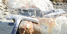 Fresney-le-Puceux, bois fossile