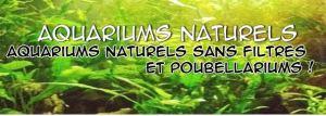 aquariums naturels
