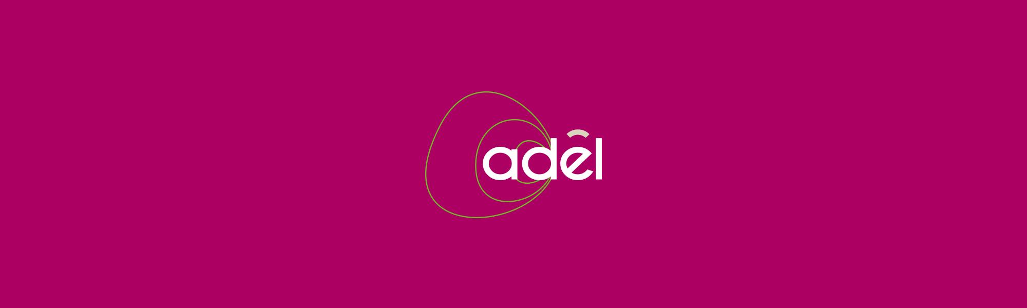 Infographiste Rouen Pascal Ridel Création logo adel Fapil