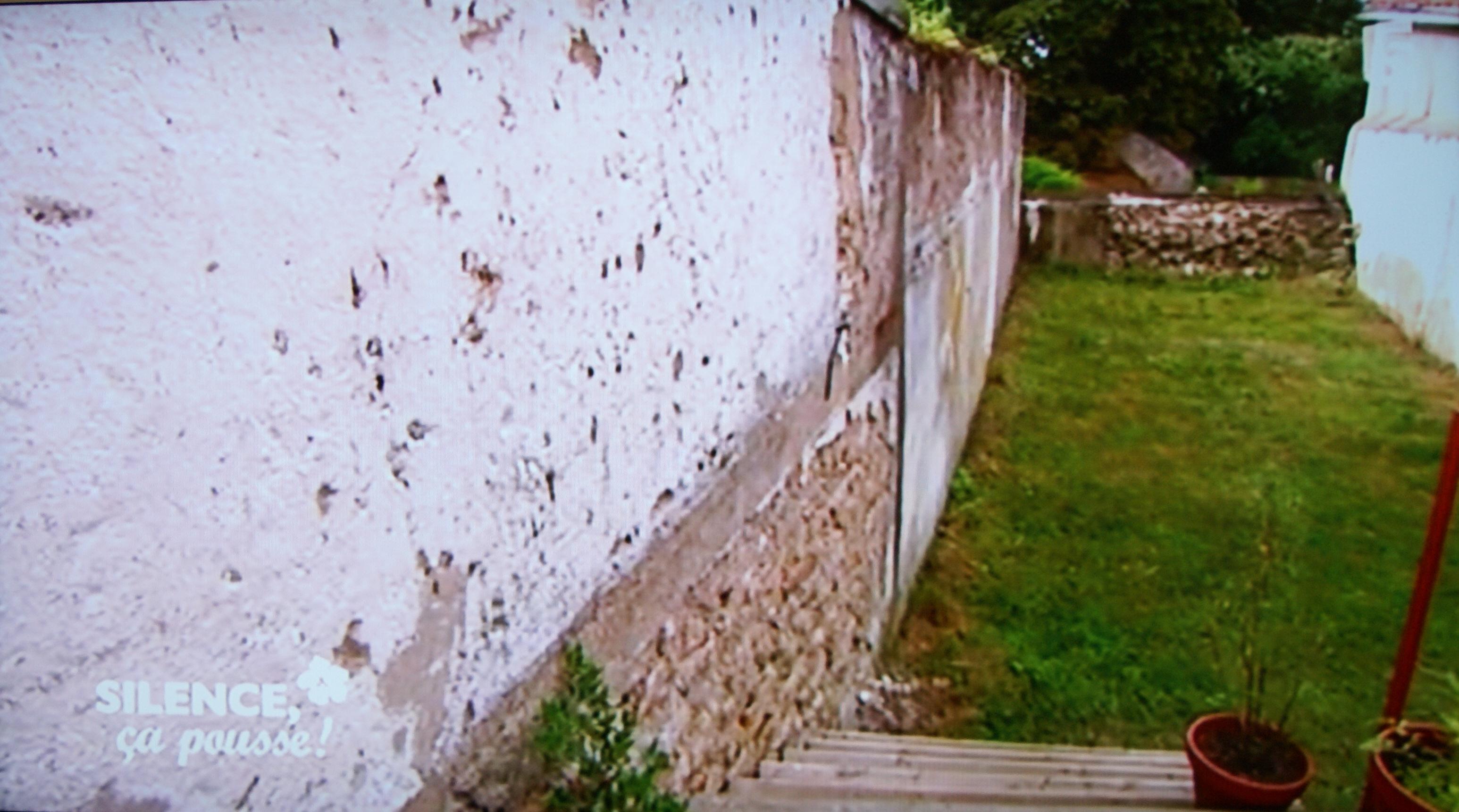 Habiller Un Mur Exterieur En Parpaing habiller un mur disgracieux | pas de panique, décryptage de
