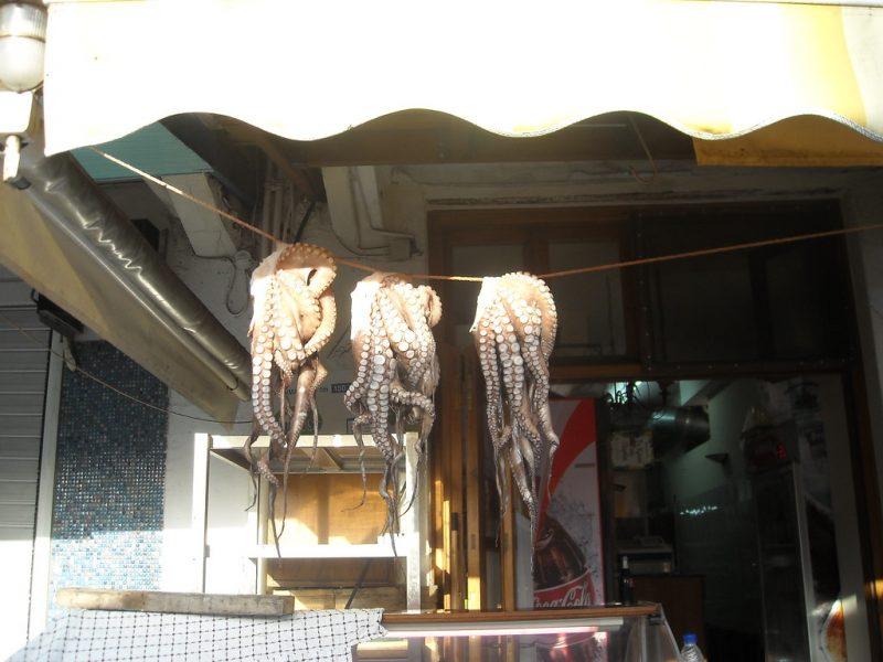 Pulpo secandose Naxos Grecia