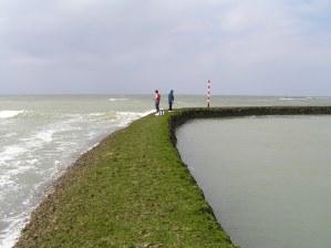 Pescadores sobre el muro de un corral.