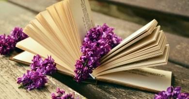 Książka z kwiatem bzu