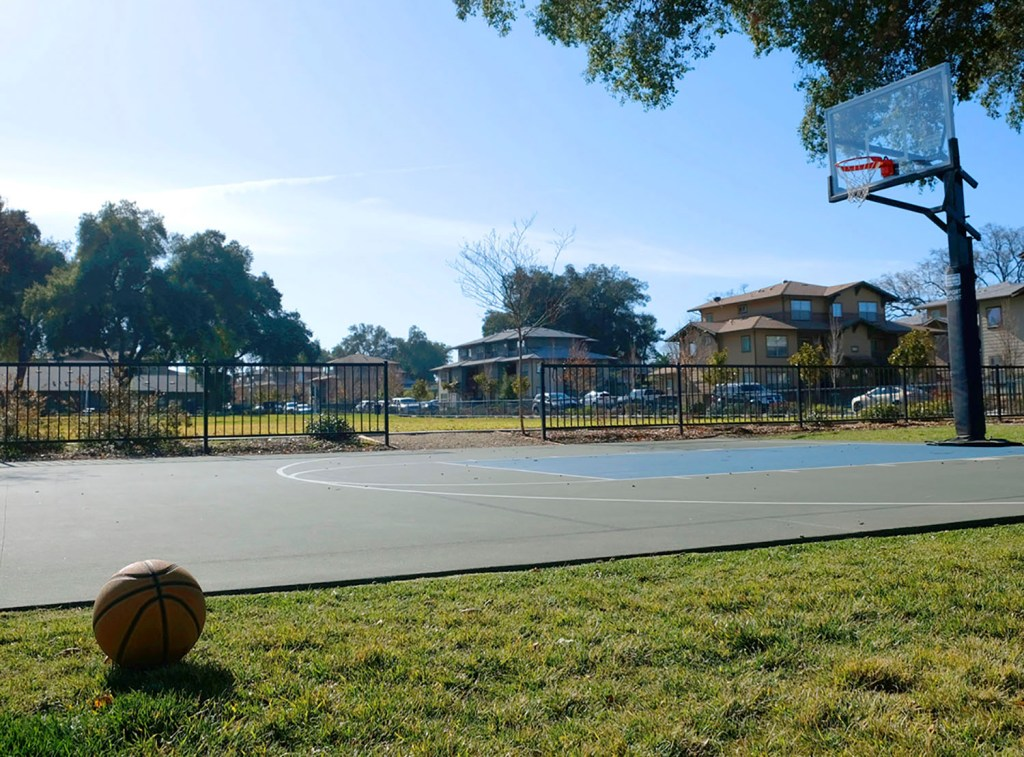 Beautification of the Year_PR Colony Media_Oak Park Housing Authority_Jan 12 2020_Melanie MacDowell_basketballcourt2