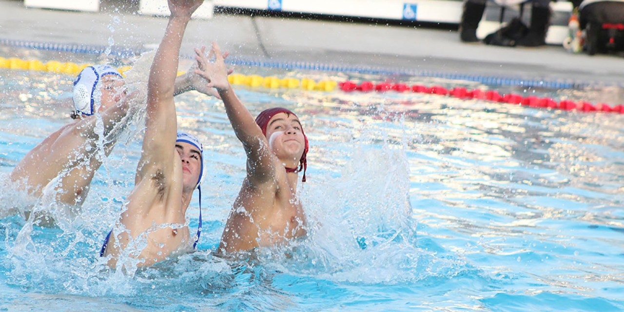 Bearcats Boys Water Polo Falls in First Round
