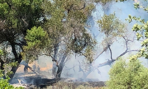 Sulfur Springs Fire under Investigation