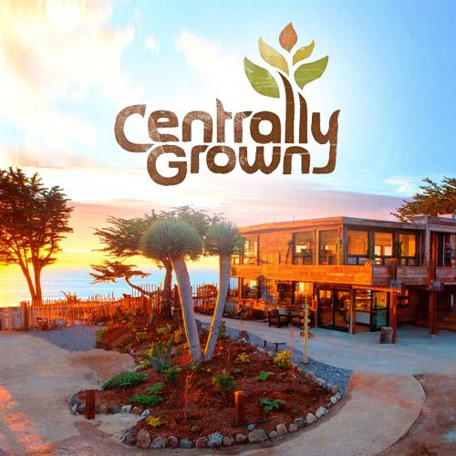 Centrally Grown