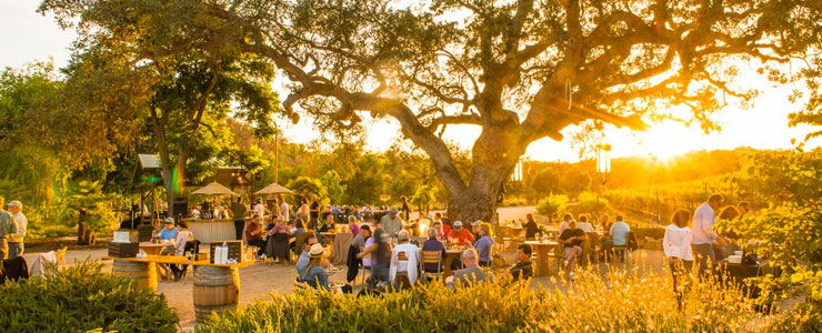 wineries with food paso robles