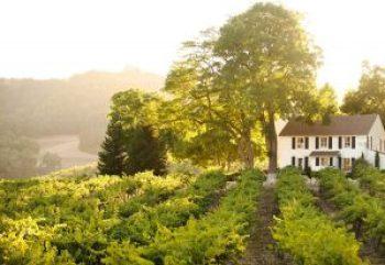 Hammersky farmhouse Rental