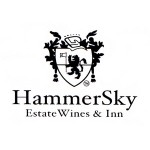 Hammersky-featured-logo
