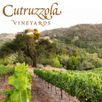 Cutruzzola-Vineyards_feature-image