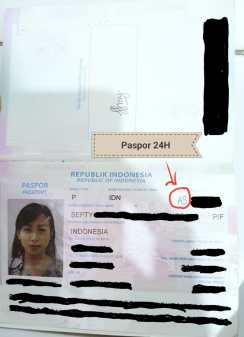 paspor data palsu