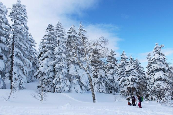 voyage-a-ski-au-japon2