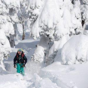 ski-au-japon