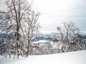 ski de randonnée à Hokkaido conseil skitrip
