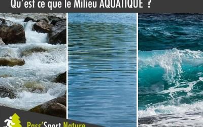 Découvrez le milieu aquatique : Un milieu riche en diversité !