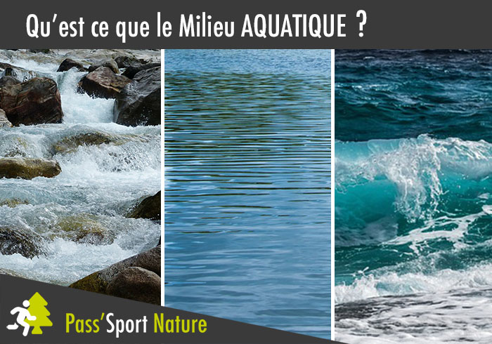 Qu'est ce que le milieu aquatique ?
