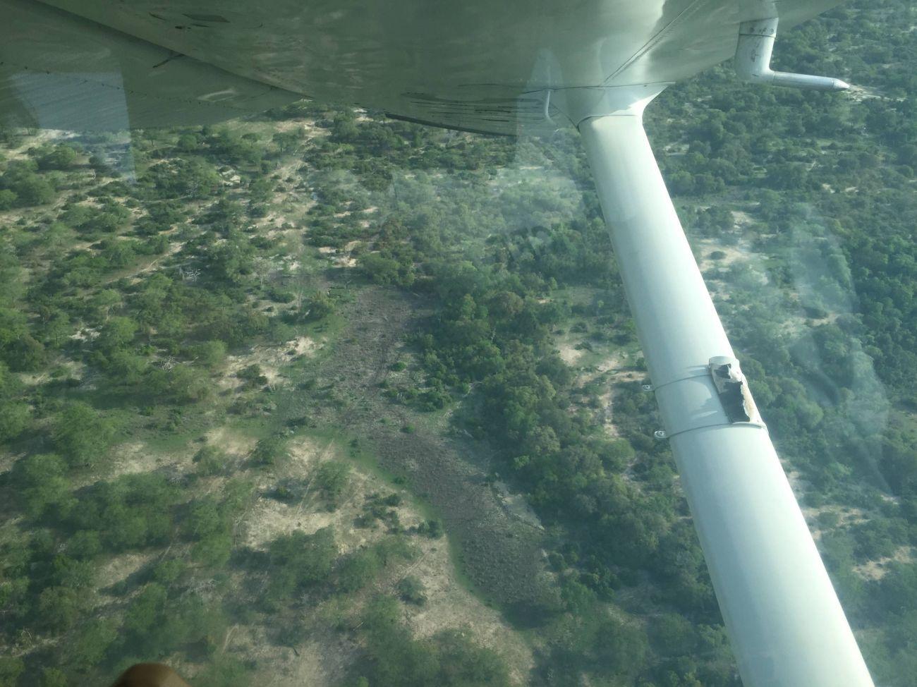 Coastal Aviation-9