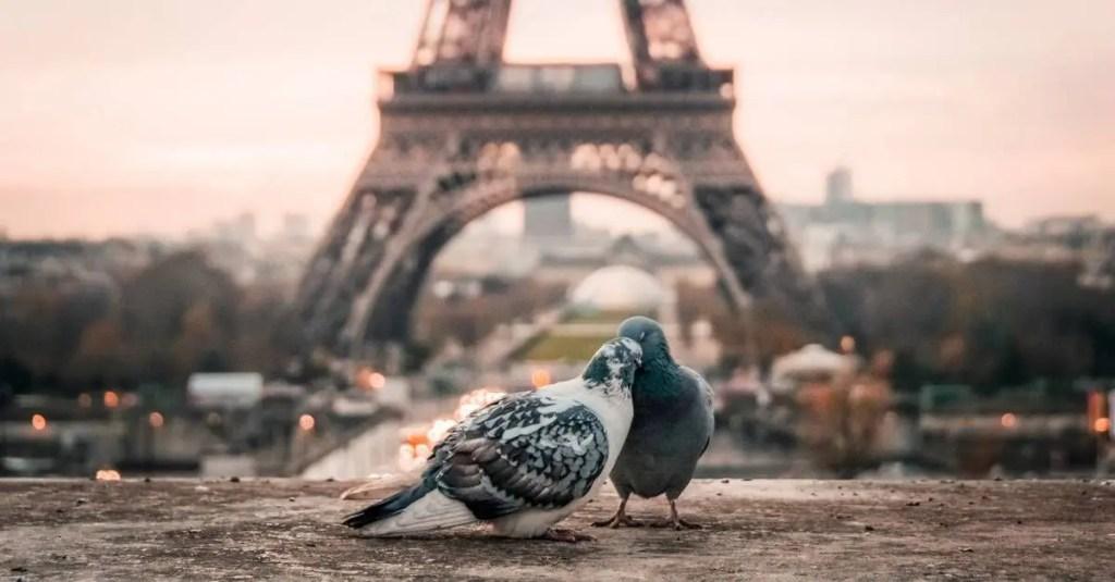 Paris stopover