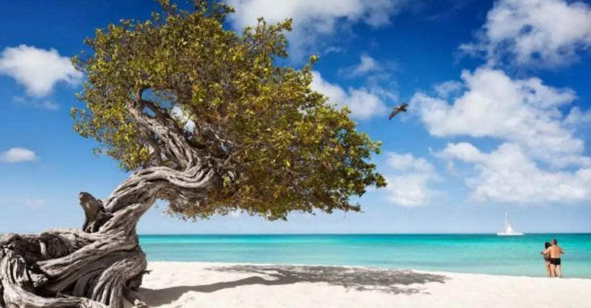 Aruba reabre fronteiras brasileiros