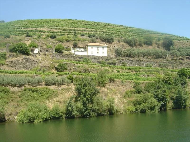 cruzeiro-no-rio-douro-portugal