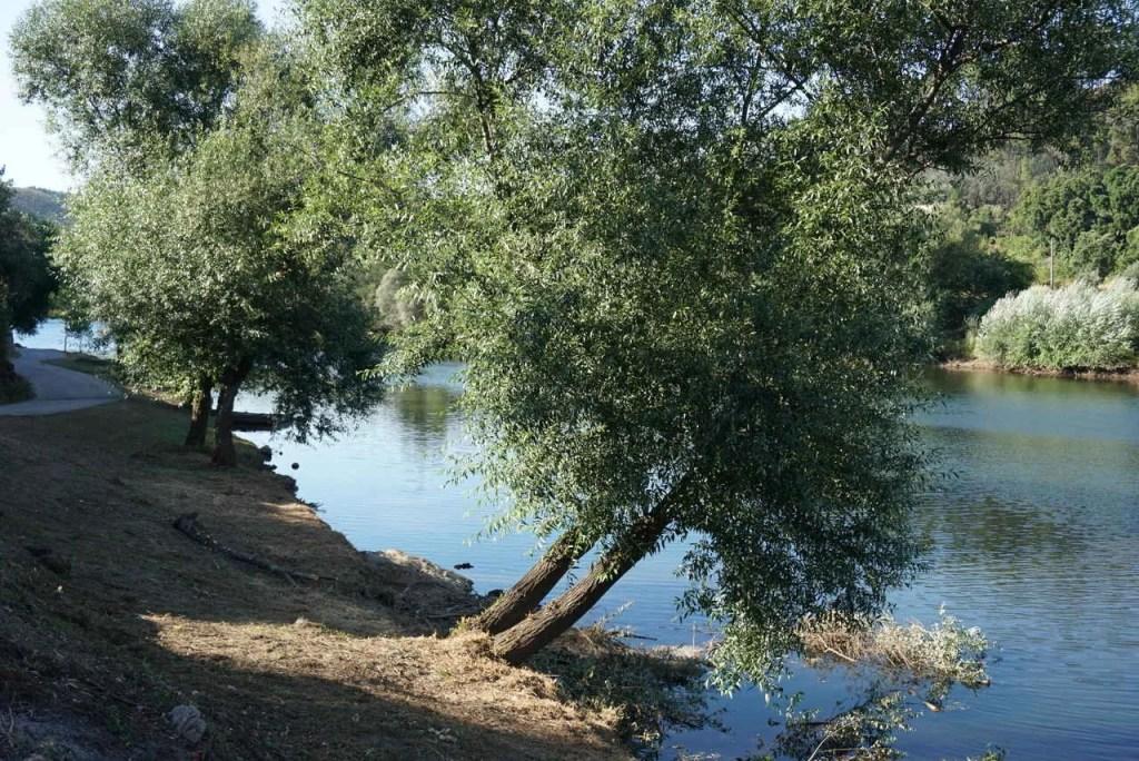 Praia Fluvial de Cambas (Oleiros)