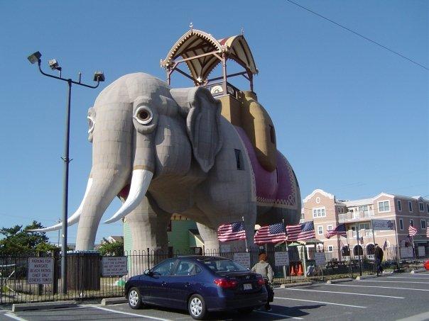 east-coast-elefante