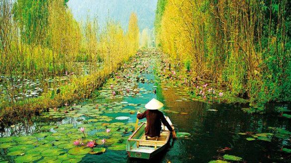 destinazione vietnam