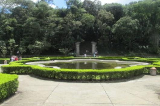Paisagem do Jardim Botânico São Paulo. Foto: Patrícia Ribeiro/ Passeios Baratos em SP