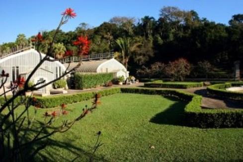 Estufa do Jardim Botânico São Paulo. Foto: Caio PImenta