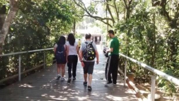 O acesso ao parque é feito por passarelas. Foto: Patrícia Ribeiro/ Passeios Baratos em SP