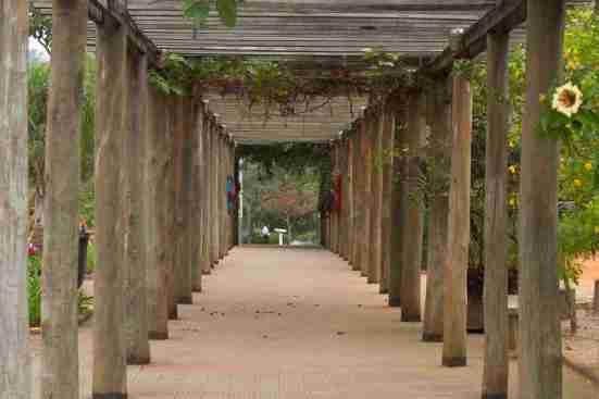 Parque Cordeiro Martin Luther King. Foto: Divulgação