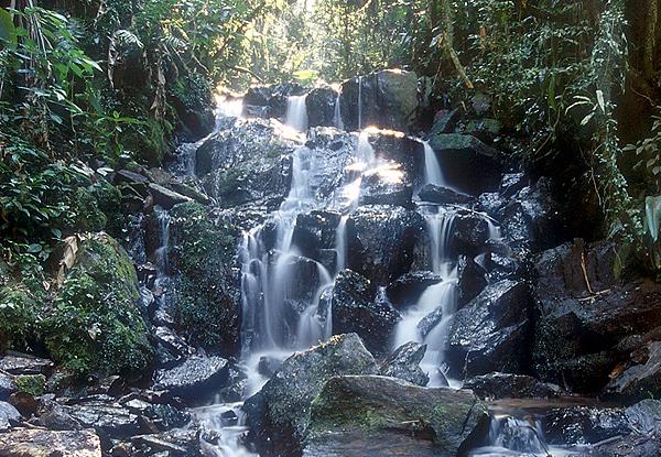Cachoeira do Núcleo Cabuçu. Foto: Divulgação