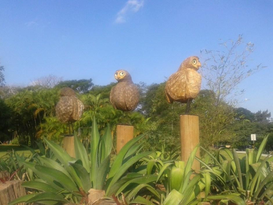 As corujas dão boas-vindas aos visitantes Foto: Patricia Ribeiro Passeios Baratos em SP