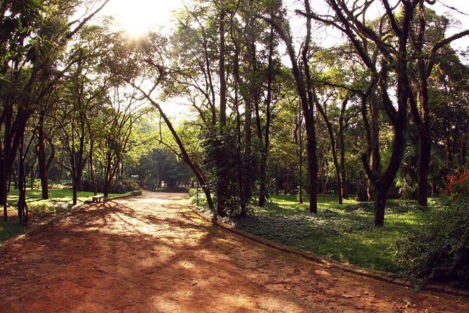 Parque do Piqueri – Caio Pimenta SPTuris