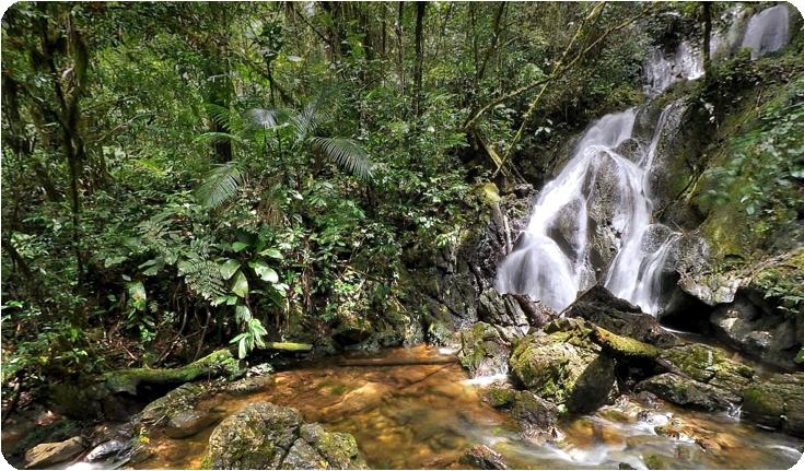 cachoeira do araça