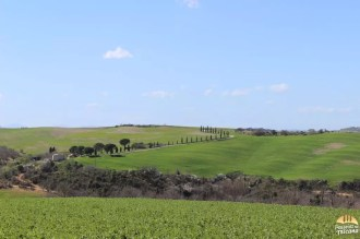 Valle D'Orcia_1