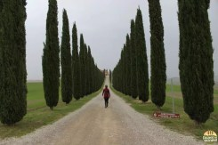 Valle D'Orcia_15