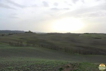 Valle D'Orcia_27
