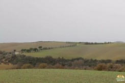 Valle D'Orcia_5