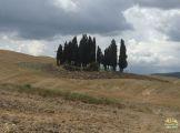 crete-senese-val-dorcia_17